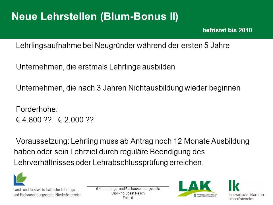 6.4 Lehrlings- und Fachausbildungsstelle Dipl.-Ing. Josef Resch Folie 8 Neue Lehrstellen (Blum-Bonus II) befristet bis 2010  Lehrlingsaufnahme bei Ne