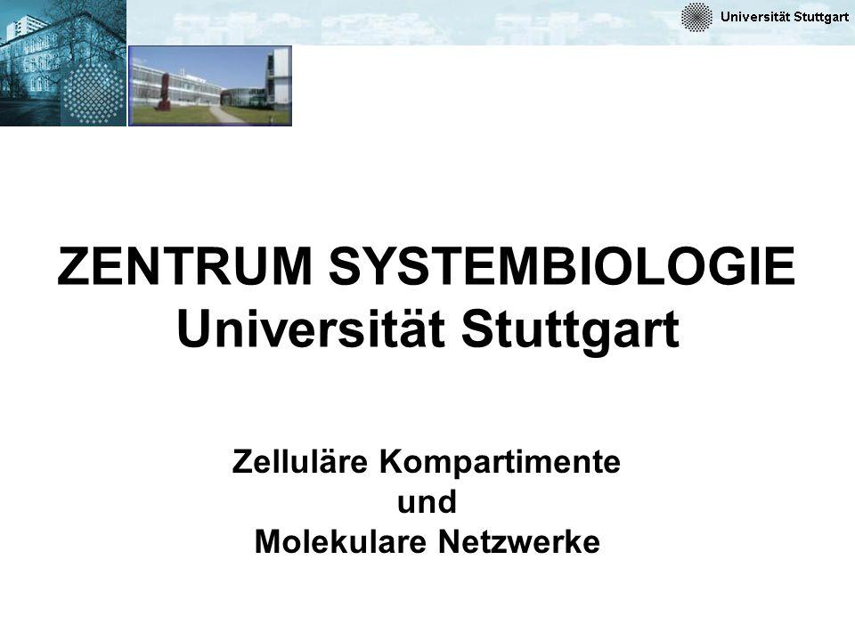 ZENTRUM SYSTEMBIOLOGIE Universität Stuttgart Zelluläre Kompartimente und Molekulare Netzwerke