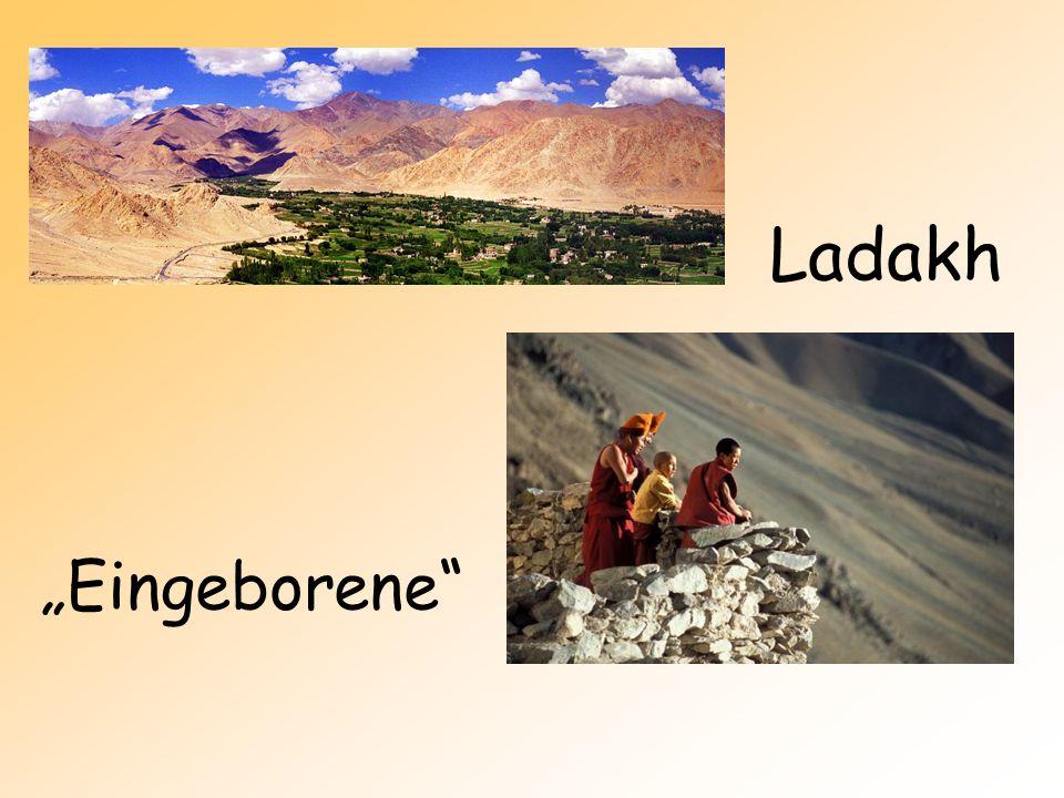 "Ladakh ""Eingeborene"
