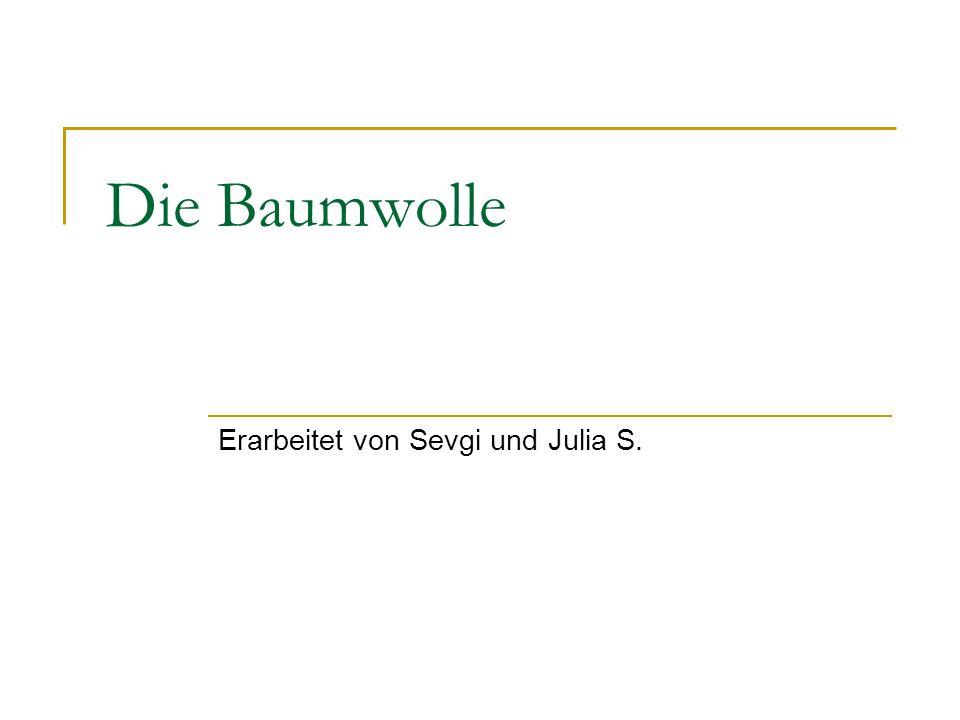 Die Baumwolle Erarbeitet von Sevgi und Julia S.