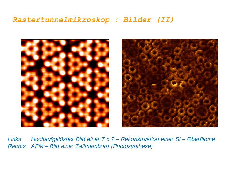 Rastertunnelmikroskop : Bilder (II) Links: Hochaufgelöstes Bild einer 7 x 7 – Rekonstruktion einer Si – Oberfläche Rechts:AFM – Bild einer Zellmembran (Photosynthese)