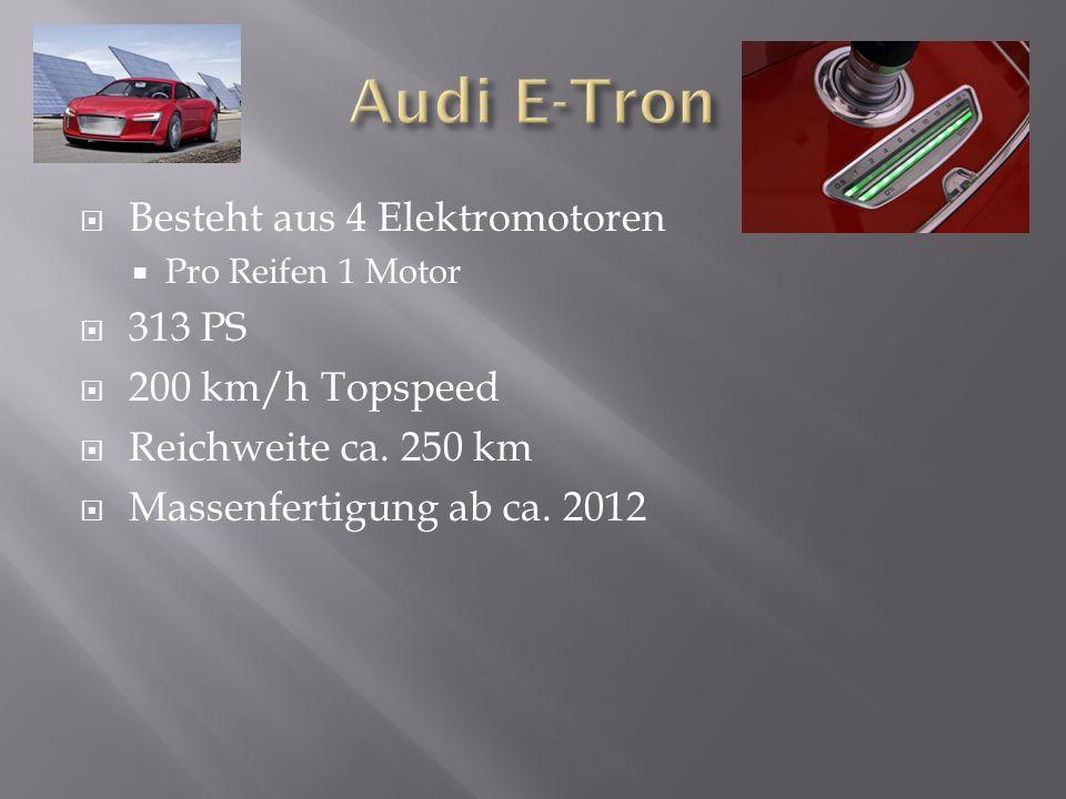  Besteht aus 4 Elektromotoren  Pro Reifen 1 Motor  313 PS  200 km/h Topspeed  Reichweite ca.