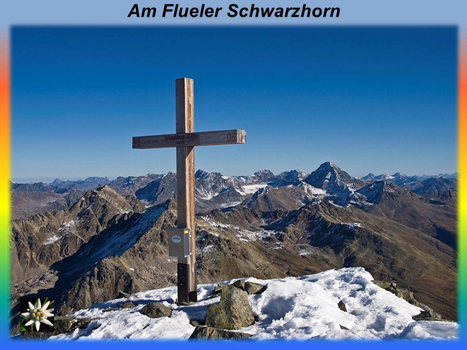 Am Flueler Schwarzhorn