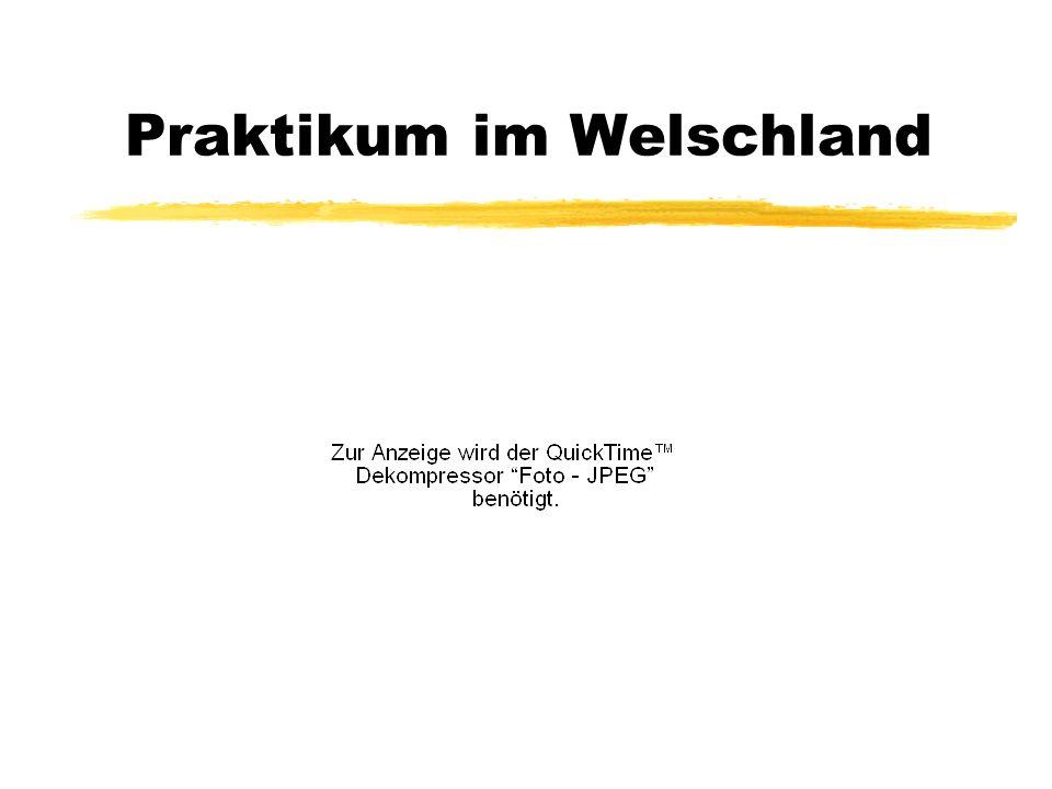 Praktikum im Welschland
