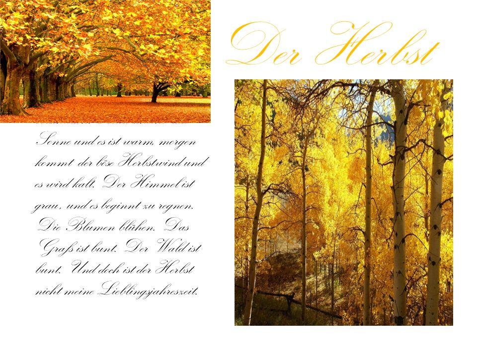 Der Herbst Das Wetter im Herbst ist so verschieden: Heute scheint due Sonne und es ist warm, morgen kommt der böse Herbstwind und es wird kalt.