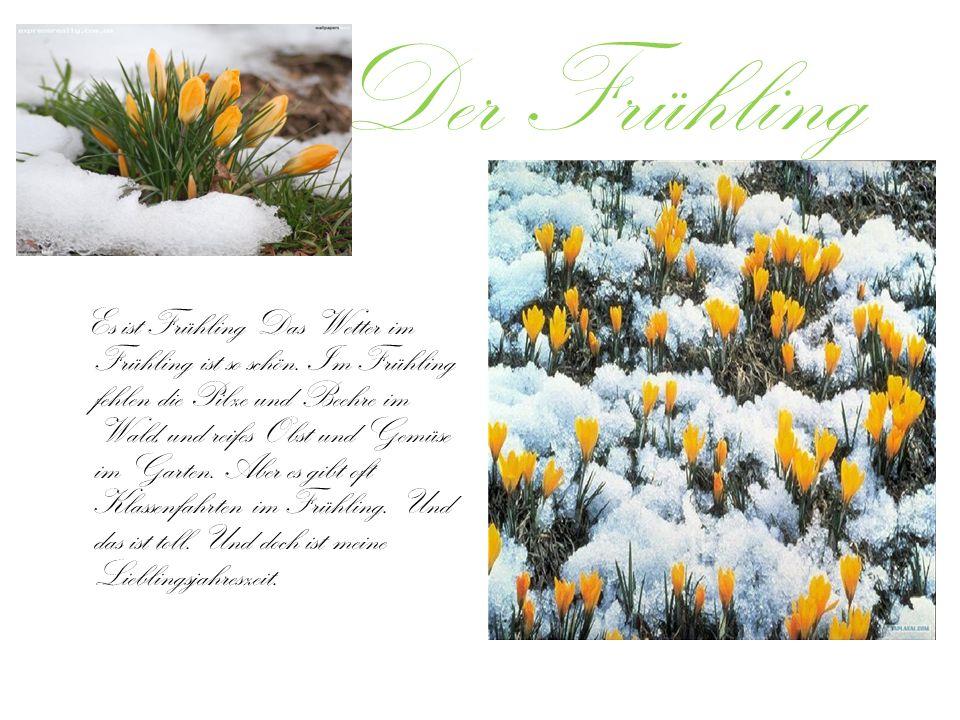 Der Frühling Es ist Frühling Das Wetter im Frühling ist so schön.