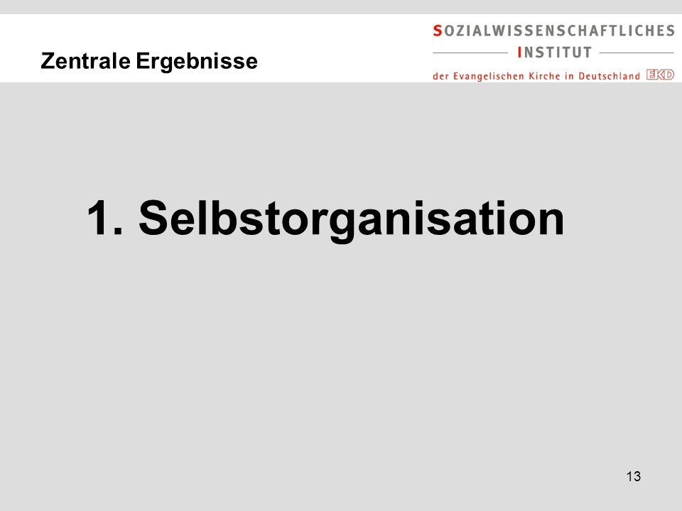 13 Zentrale Ergebnisse 1. Selbstorganisation