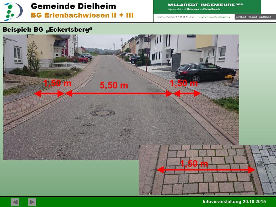 Kleines Feldlein 3 74889 Sinsheim Internet: www.ib-willaredt.de Infoveranstaltung 20.10.2015 Gemeinde Dielheim BG Erlenbachwiesen II + III Beispiel: B