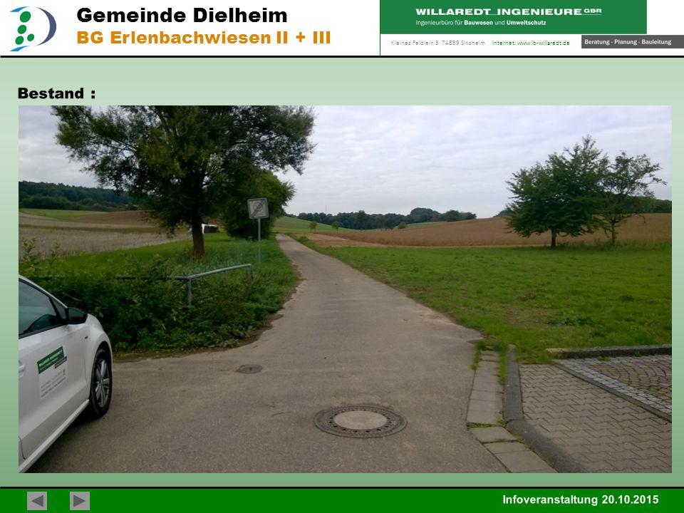 Kleines Feldlein 3 74889 Sinsheim Internet: www.ib-willaredt.de Infoveranstaltung 20.10.2015 Gemeinde Dielheim BG Erlenbachwiesen II + III Bestand :