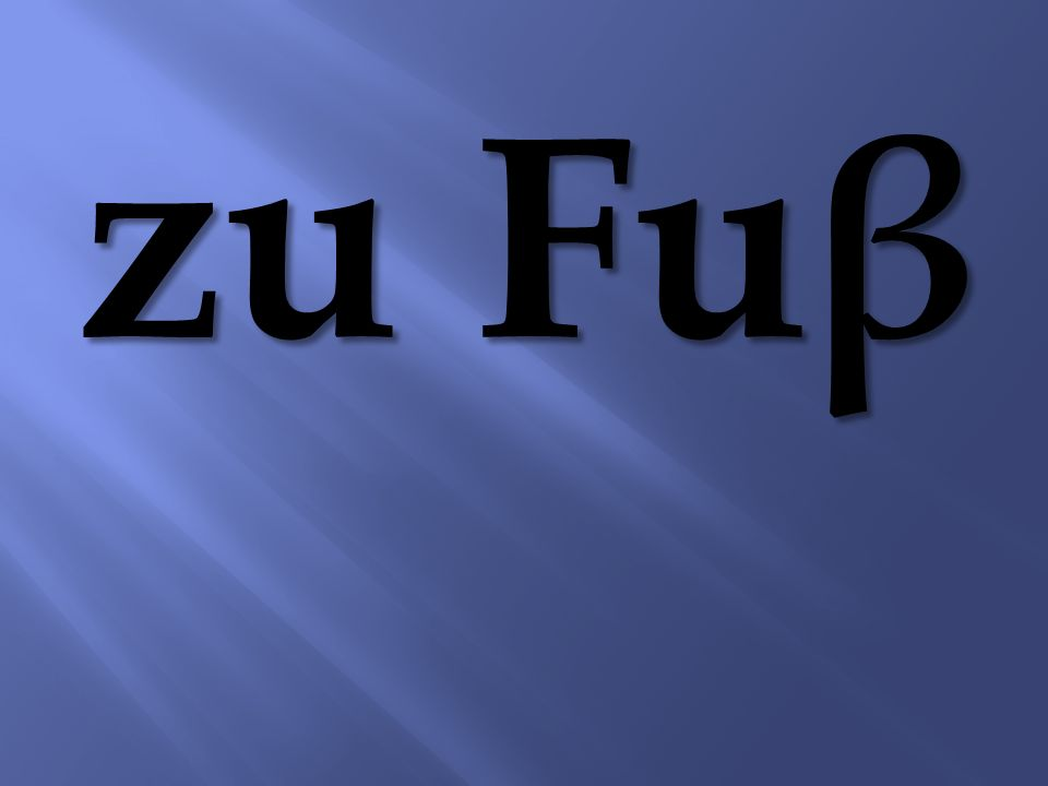 zu Fu β
