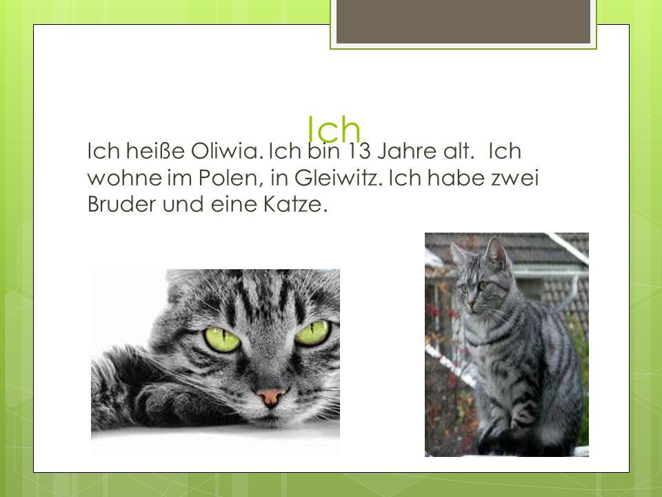 Ich Ich heiße Oliwia. Ich bin 13 Jahre alt. Ich wohne im Polen, in Gleiwitz.