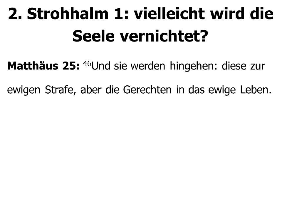 2. Strohhalm 1: vielleicht wird die Seele vernichtet.