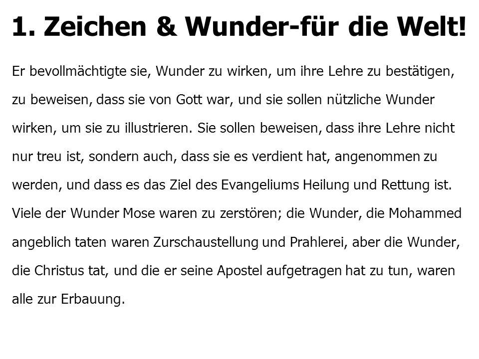1.Zeichen & Wunder-für die Welt.