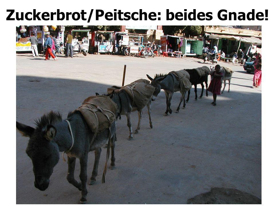 Zuckerbrot/Peitsche: beides Gnade!