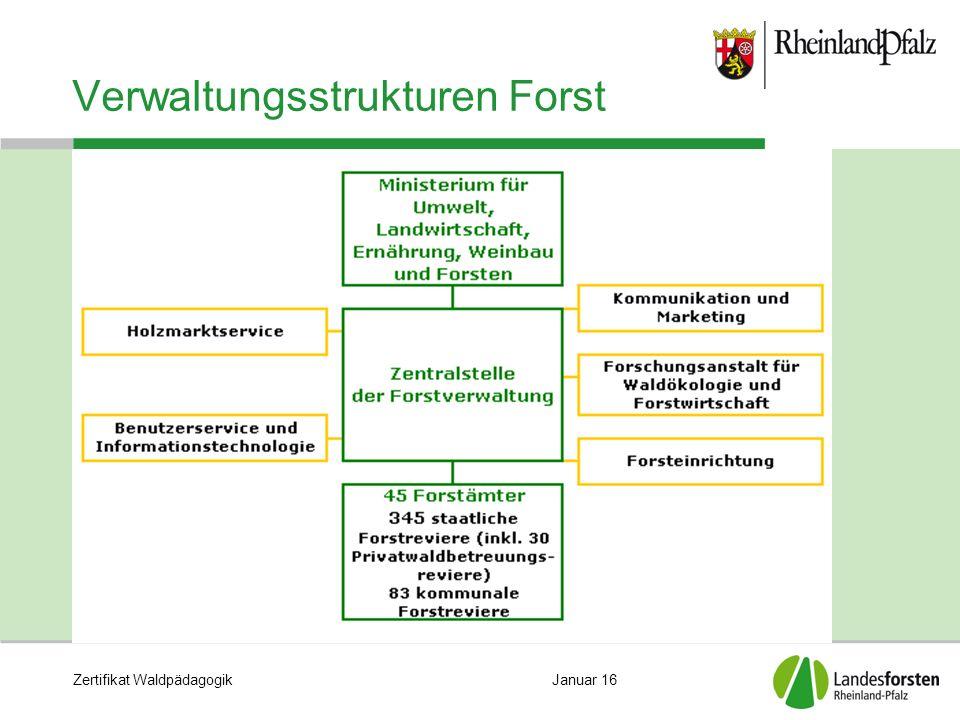 Zertifikat WaldpädagogikJanuar 16 Verwaltungsstrukturen Forst