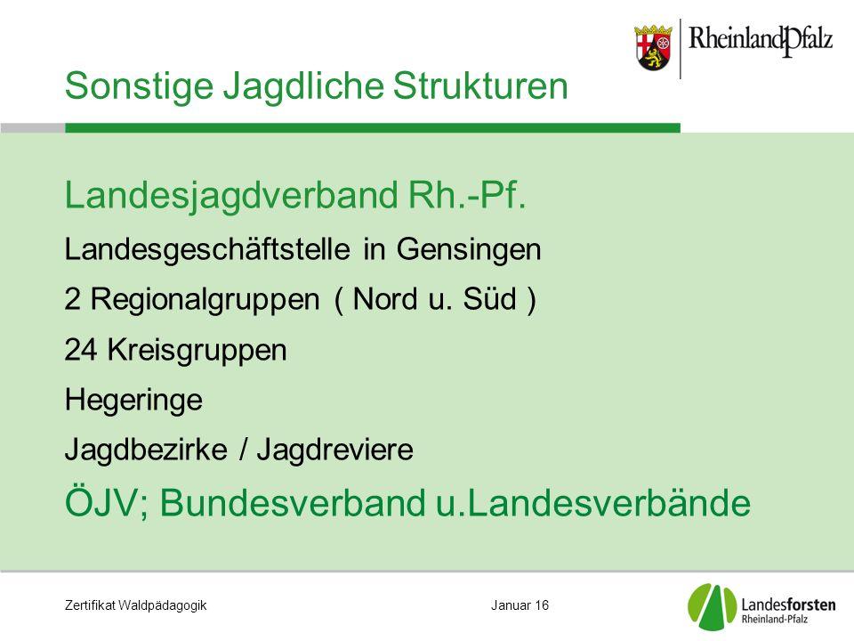 Zertifikat WaldpädagogikJanuar 16 Sonstige Jagdliche Strukturen Landesjagdverband Rh.-Pf.