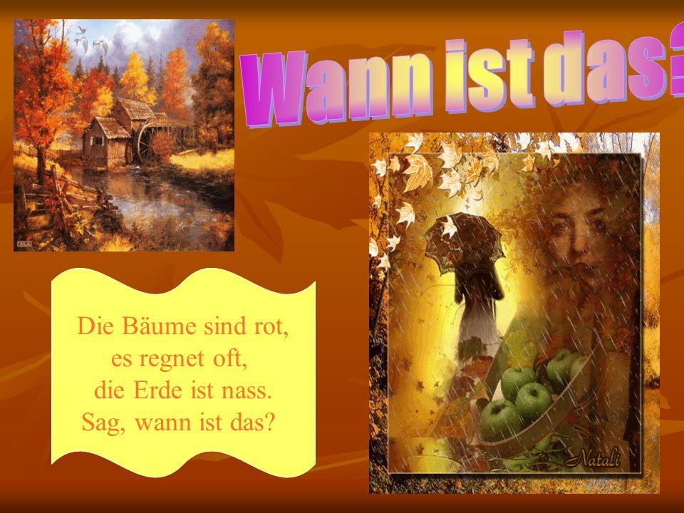 Es gibt in Deutschland viele Wälder und Felder, Seen und Flüsse und auch Gebirge.