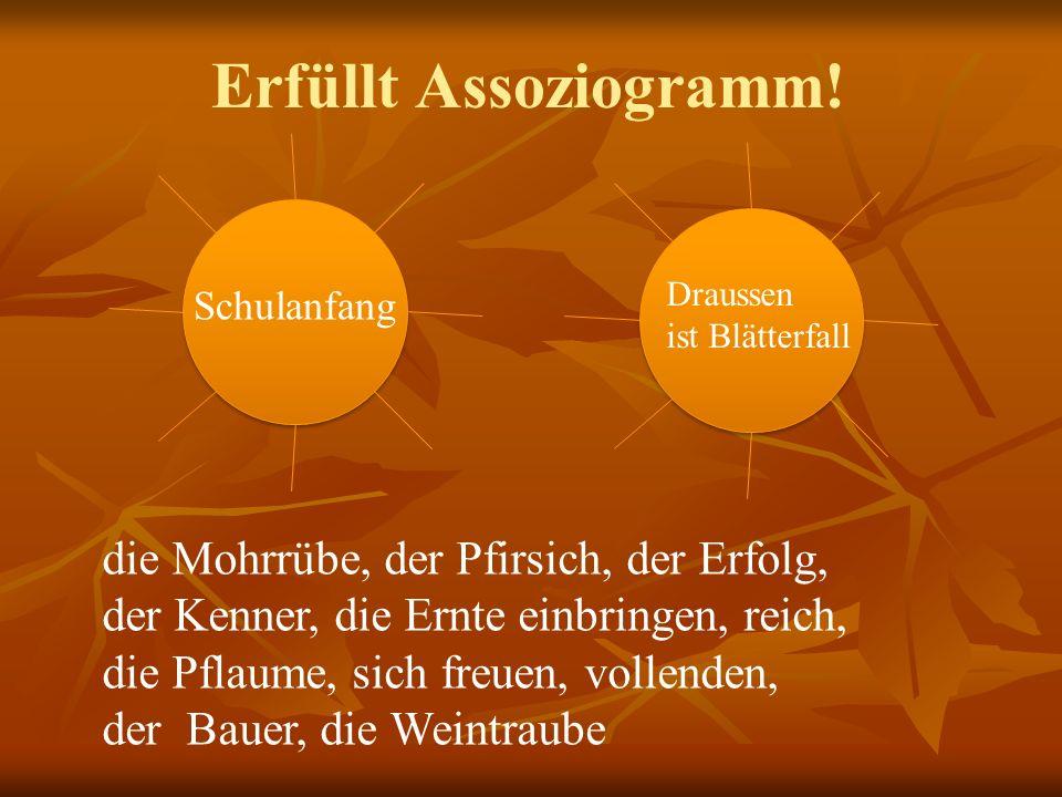 der Bodensee der Rhein Die Zugspitze 5.Der höchste Berg ist … 6.Der gröβte Fluss ist … 7.