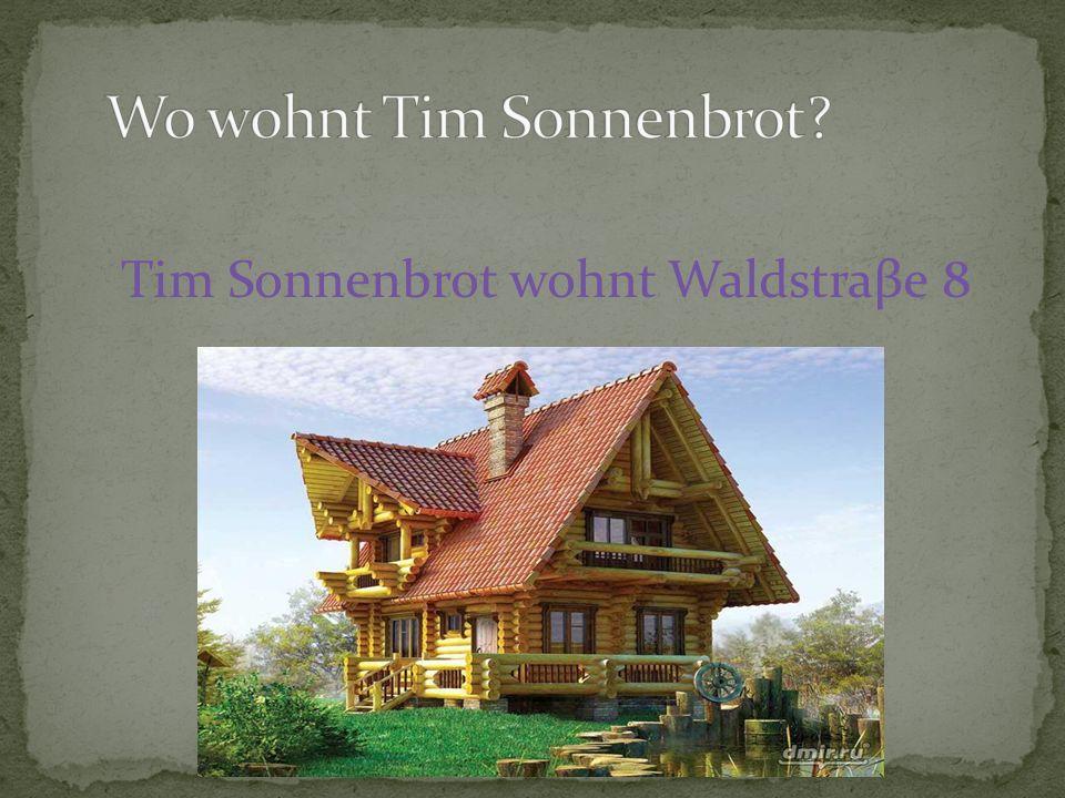 Tim Sonnenbrot wohnt Waldstraβe 8