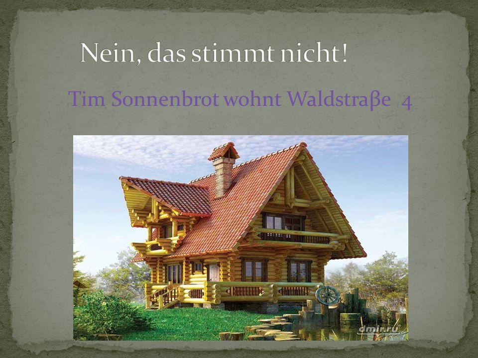 Tim Sonnenbrot wohnt Waldstraβe 4