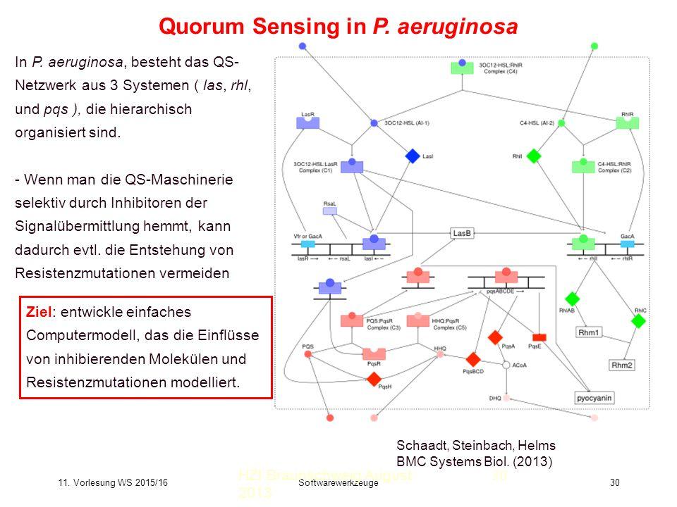 11. Vorlesung WS 2015/16Softwarewerkzeuge30 Quorum Sensing in P.