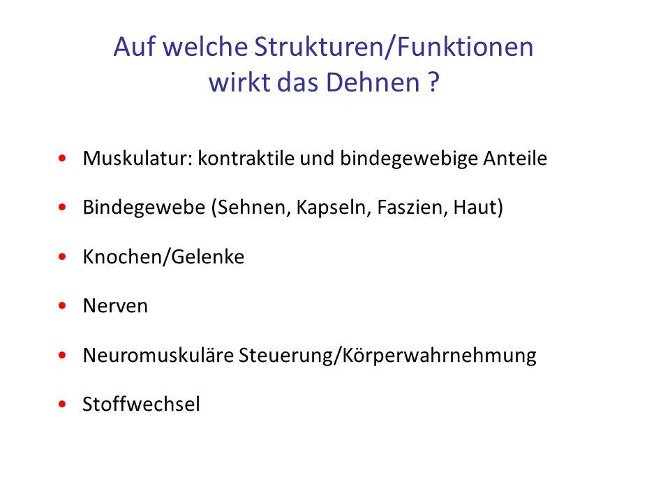 Idstein | Köln | Hamburg | Düsseldorf | München | Frankfurt am Main | Berlin | Zwickau | New York 7 Bauprinzip eines Skelettmuskels Müller-Wohlfarth.