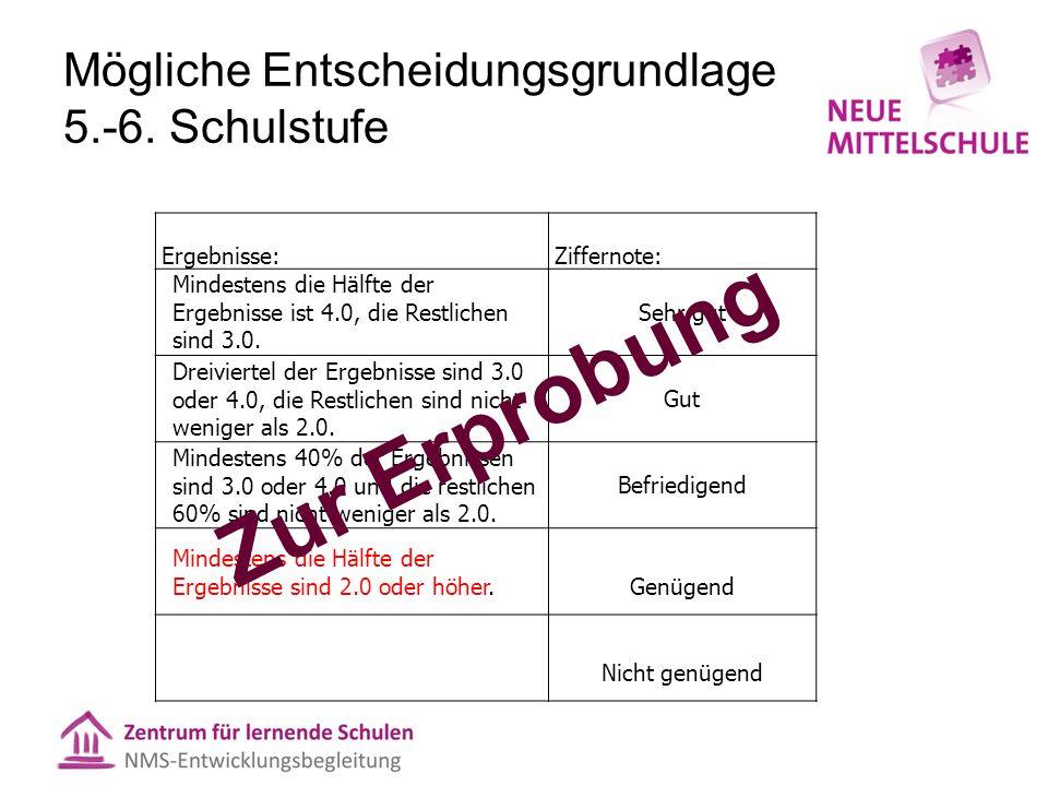 Anwendungsbeispiel Entscheidungsgrundlage 5.– 6.