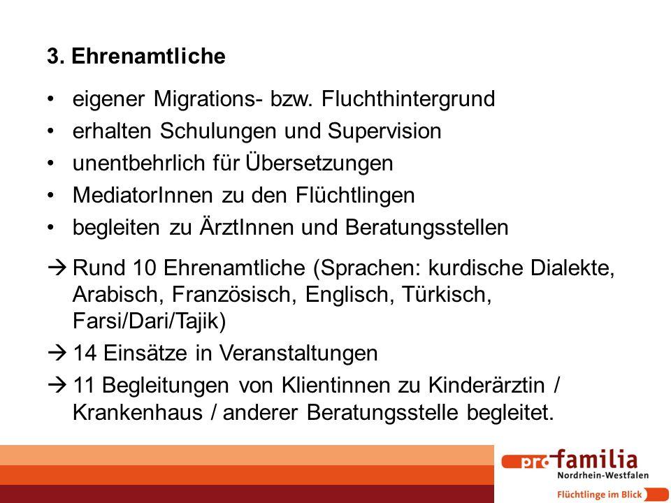 3. Ehrenamtliche eigener Migrations- bzw. Fluchthintergrund erhalten Schulungen und Supervision unentbehrlich für Übersetzungen MediatorInnen zu den F