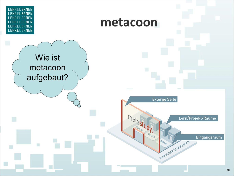 metacoon 30 Wie ist metacoon aufgebaut?