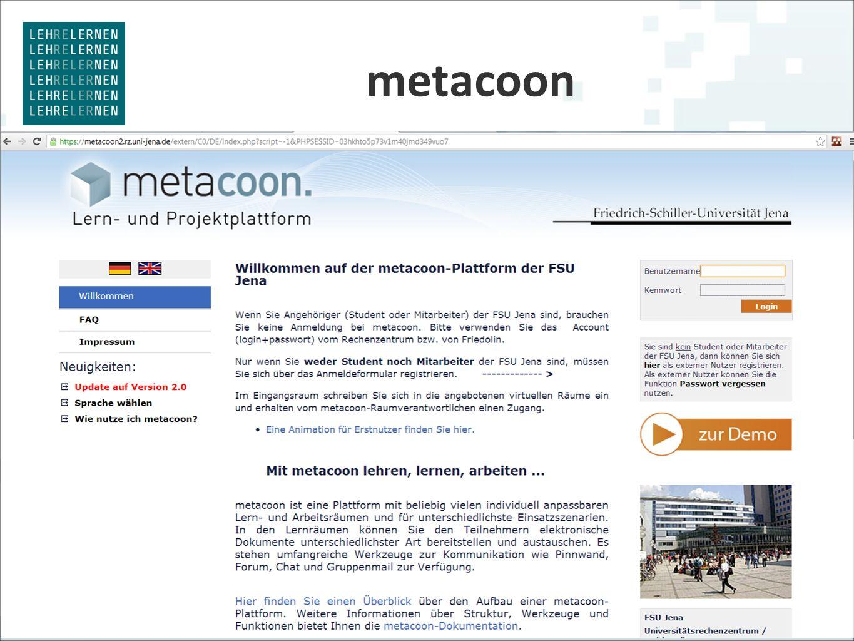 metacoon 31