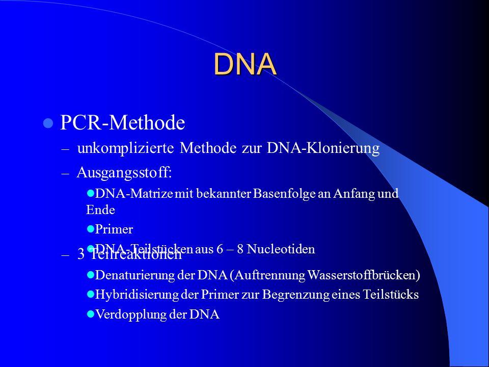 DNA PCR-Methode – unkomplizierte Methode zur DNA-Klonierung – Ausgangsstoff: DNA-Matrize mit bekannter Basenfolge an Anfang und Ende Primer DNA-Teilst
