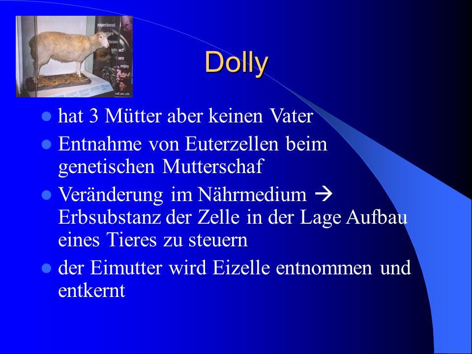 Dolly hat 3 Mütter aber keinen Vater Entnahme von Euterzellen beim genetischen Mutterschaf Veränderung im Nährmedium  Erbsubstanz der Zelle in der La