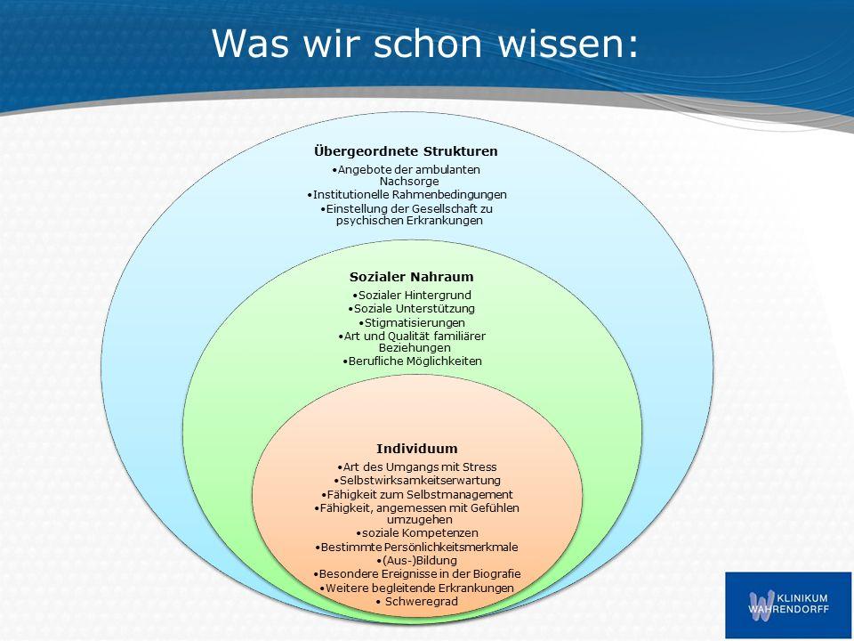 Hintergrundliteratur Amering, M.& Schmolke, M. (2010).