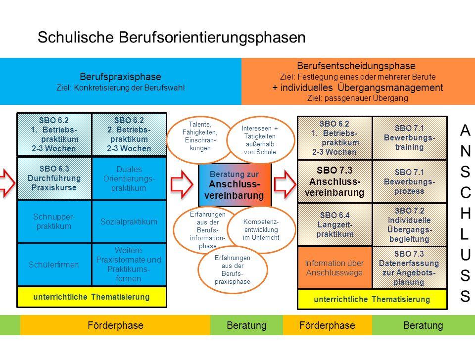 Berufsentscheidungsphase Ziel: Festlegung eines oder mehrerer Berufe + individuelles Übergangsmanagement Ziel: passgenauer Übergang SBO 6.3 Durchführung Praxiskurse Beratung zur Anschluss- vereinbarung SBO 6.2 2.