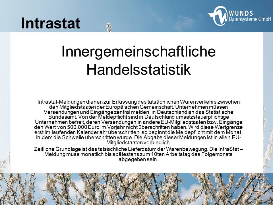Meldeformen: Online Formulareingabe im Internet Datei-Upload von Meldedateien https://www-idev.destatis.de bzw.