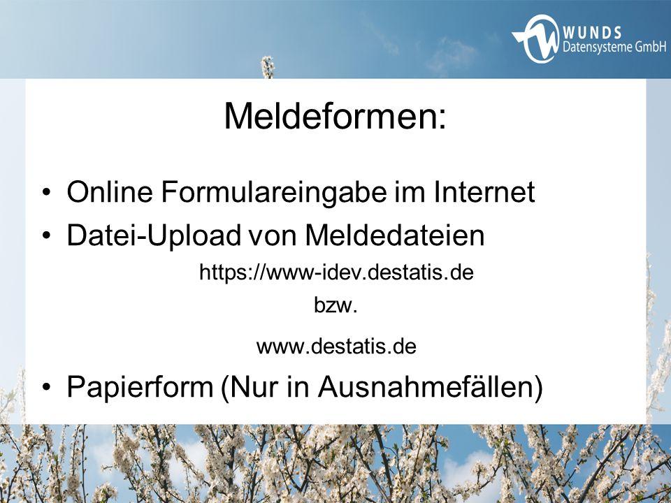 Meldeformen: Online Formulareingabe im Internet Datei-Upload von Meldedateien https://www-idev.destatis.de bzw. www.destatis.de Papierform (Nur in Aus