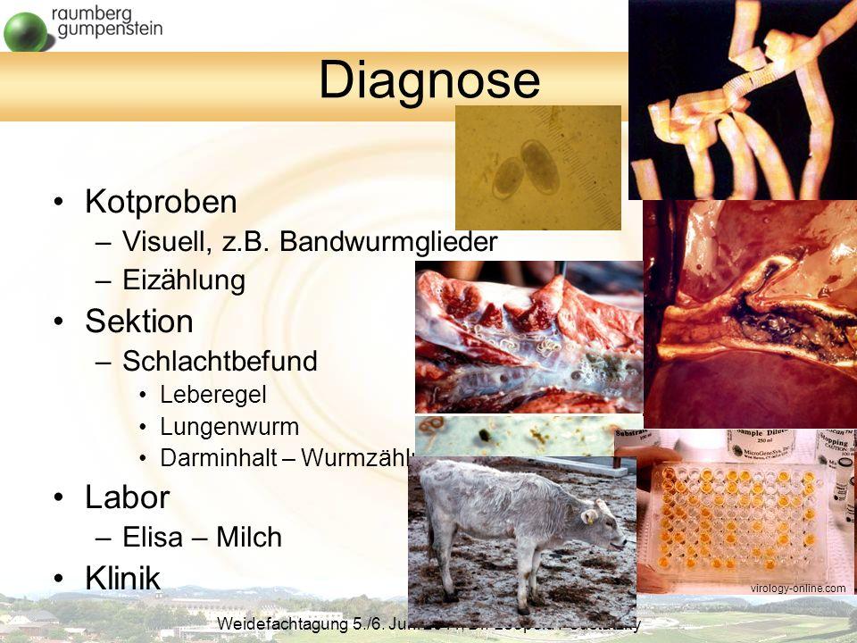 Weidefachtagung 5./6.Juni 2011, Dr. Leopold Podstatzky Diagnose Kotproben –Visuell, z.B.