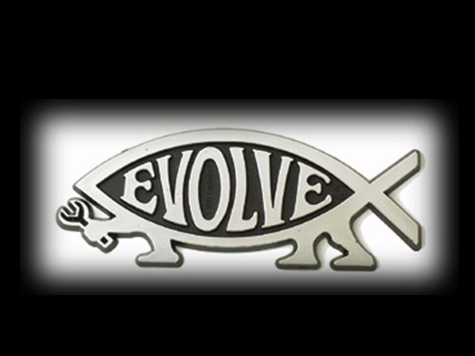 52 Evolution 2009 4.If we could turn back time?