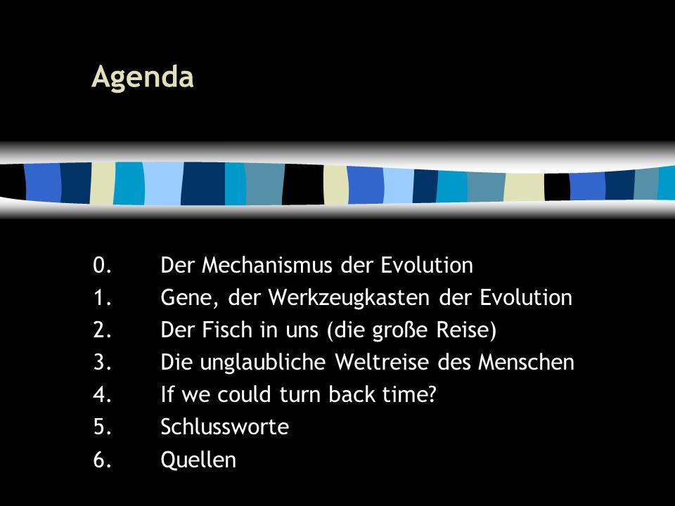 6 Agenda 0.Der Mechanismus der Evolution 1.Gene, der Werkzeugkasten der Evolution 2.Der Fisch in uns (die große Reise) 3.Die unglaubliche Weltreise des Menschen 4.If we could turn back time.