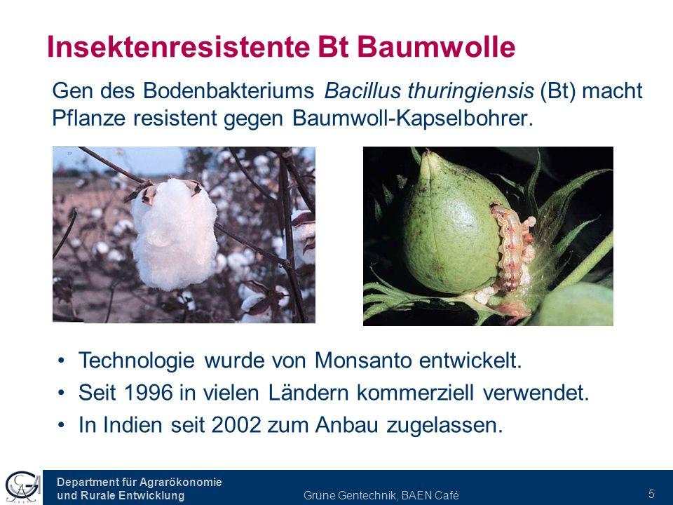 Department für Agrarökonomie und Rurale Entwicklung Grüne Gentechnik, BAEN Café 5 Insektenresistente Bt Baumwolle Gen des Bodenbakteriums Bacillus thuringiensis (Bt) macht Pflanze resistent gegen Baumwoll-Kapselbohrer.