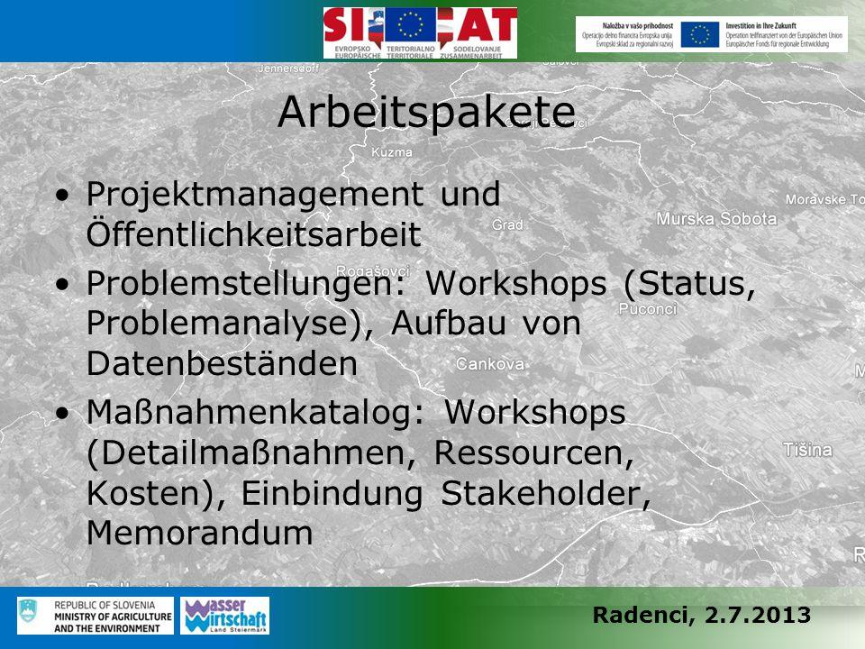 Radenci, 2.7.2013 Projektmanagement und Öffentlichkeitsarbeit Problemstellungen: Workshops (Status, Problemanalyse), Aufbau von Datenbeständen Maßnahm
