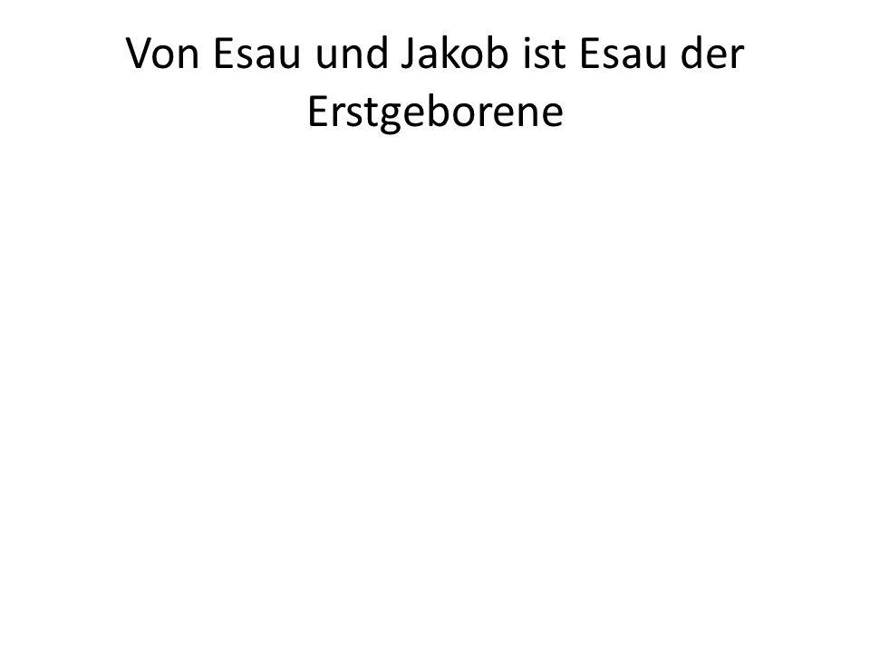 Von Esau und Jakob ist Esau der Erstgeborene