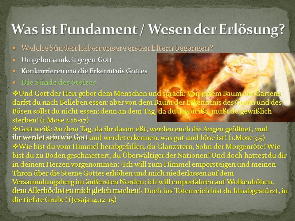Welche Sünden haben unsere ersten Eltern begangen? Umgehorsamkeit gegen Gott Konkurrieren um die Erkenntnis Gottes Die Sünde des Stolzes dem Allerhöch
