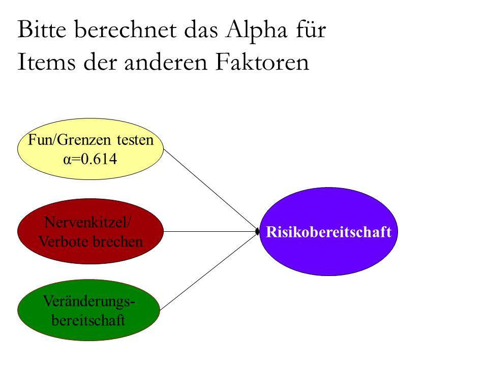 Bitte berechnet das Alpha für Items der anderen Faktoren Risikobereitschaft Veränderungs- bereitschaft Nervenkitzel/ Verbote brechen Fun/Grenzen testen α=0.614