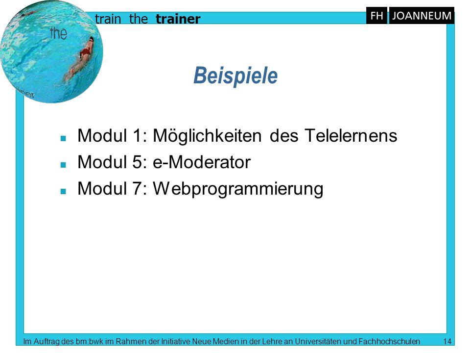 train the trainer Im Auftrag des bm:bwk im Rahmen der Initiative Neue Medien in der Lehre an Universitäten und Fachhochschulen 14 Beispiele n Modul 1: Möglichkeiten des Telelernens n Modul 5: e-Moderator n Modul 7: Webprogrammierung