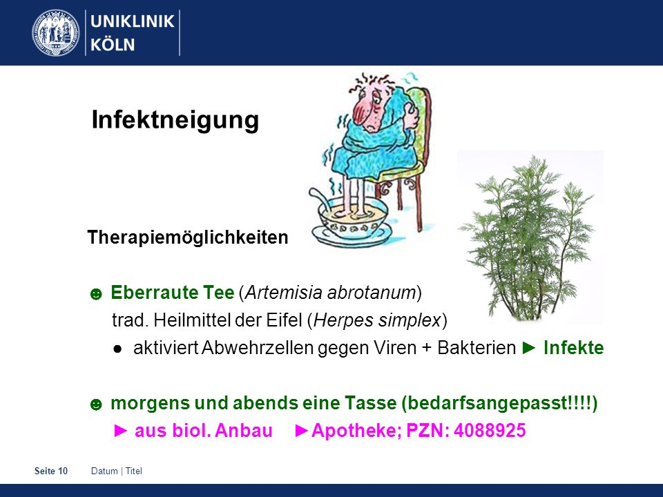Datum | TitelSeite 10 Infektneigung Therapiemöglichkeiten ☻ Eberraute Tee (Artemisia abrotanum) trad.