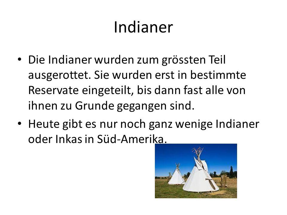 Indianer Die Indianer wurden zum grössten Teil ausgerottet. Sie wurden erst in bestimmte Reservate eingeteilt, bis dann fast alle von ihnen zu Grunde