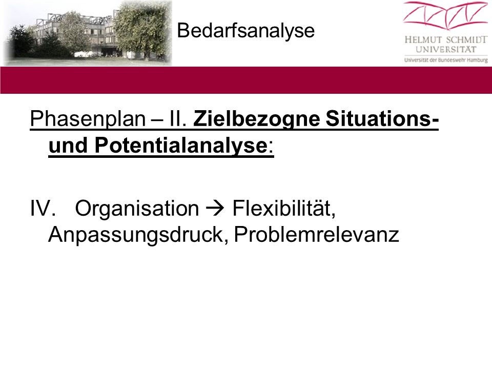 Bedarfsanalyse Phasenplan – II. Zielbezogne Situations- und Potentialanalyse: IV. Organisation  Flexibilität, Anpassungsdruck, Problemrelevanz