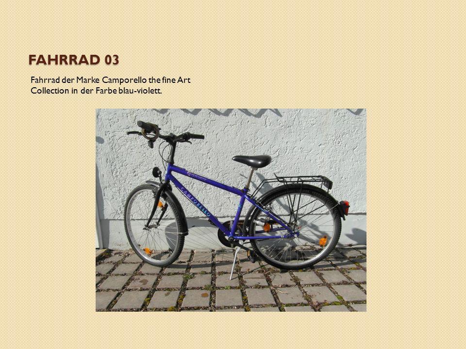 FAHRRAD 03 Fahrrad der Marke Camporello the fine Art Collection in der Farbe blau-violett.