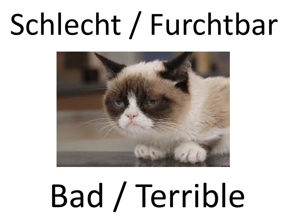 Schlecht / Furchtbar Bad / Terrible